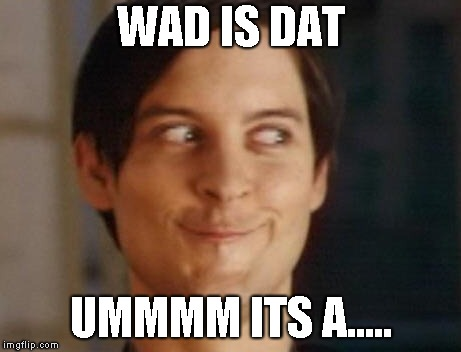 ummmm whatever its called | WAD IS DAT UMMMM ITS A..... | image tagged in memes | made w/ Imgflip meme maker