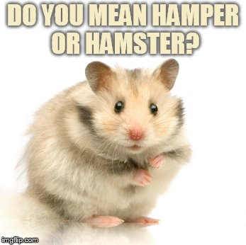 DO YOU MEAN HAMPER OR HAMSTER? | made w/ Imgflip meme maker