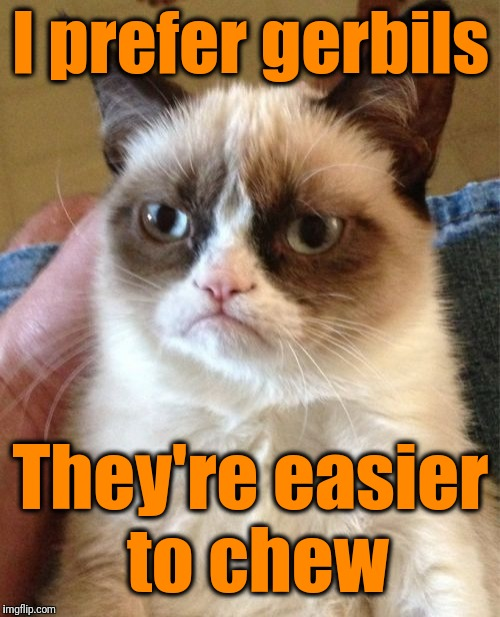 Grumpy Cat Meme | I prefer gerbils They're easier to chew | image tagged in memes,grumpy cat | made w/ Imgflip meme maker