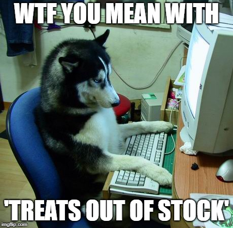 I Have No Idea What I Am Doing Meme | WTF YOU MEAN WITH 'TREATS OUT OF STOCK' | image tagged in memes,i have no idea what i am doing,dogmeme,dog memes | made w/ Imgflip meme maker
