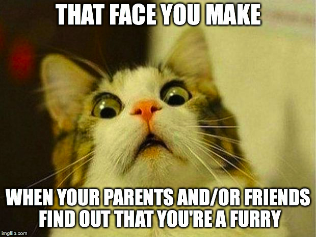Scared Cat Meme | THAT FACE YOU MAKE WHEN YOUR PARENTS AND/OR FRIENDS FIND OUT THAT YOU'RE A FURRY | image tagged in memes,scared cat | made w/ Imgflip meme maker