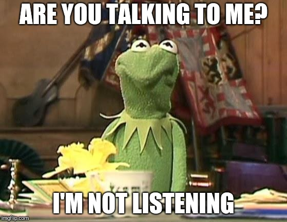 disgusted kermit |  ARE YOU TALKING TO ME? I'M NOT LISTENING | image tagged in disgusted kermit | made w/ Imgflip meme maker
