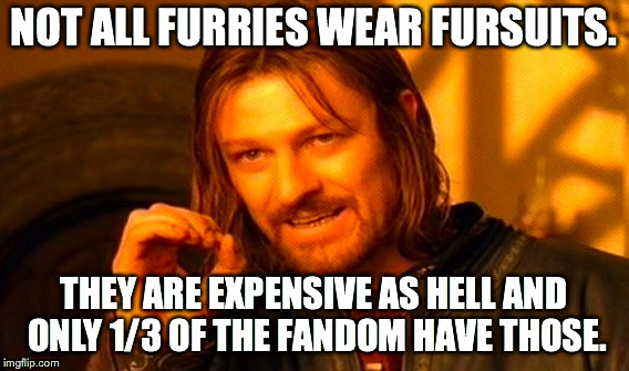 One Does Not Simply Meme | NOT ALL FURRIES WEAR FURSUITS. THEY ARE EXPENSIVE AS HELL AND ONLY 1/3 OF THE FANDOM HAVE THOSE. | image tagged in memes,one does not simply | made w/ Imgflip meme maker