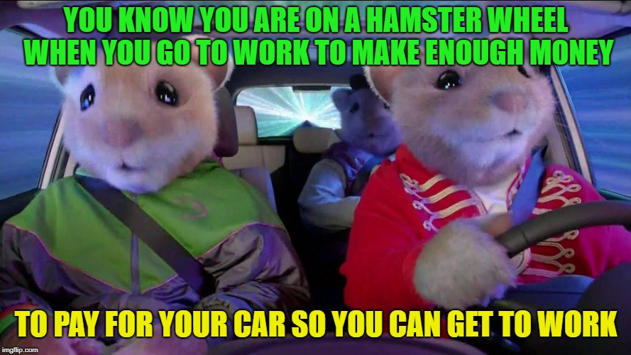 Hamster Weekend | YOU KNOW YOU ARE ON A HAMSTER WHEEL WHEN YOU GO TO WORK TO MAKE ENOUGH MONEY TO PAY FOR YOUR CAR SO YOU CAN GET TO WORK | image tagged in hamster weekend,funny,memes | made w/ Imgflip meme maker