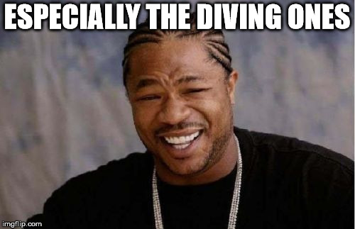 Yo Dawg Heard You Meme | ESPECIALLY THE DIVING ONES | image tagged in memes,yo dawg heard you | made w/ Imgflip meme maker
