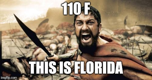 Sparta Leonidas Meme | 110 F THIS IS FLORIDA | image tagged in memes,sparta leonidas | made w/ Imgflip meme maker
