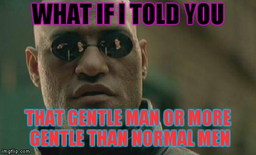 Matrix Morpheus Meme | WHAT IF I TOLD YOU THAT GENTLE MAN OR MORE GENTLE THAN NORMAL MEN | image tagged in memes,matrix morpheus | made w/ Imgflip meme maker