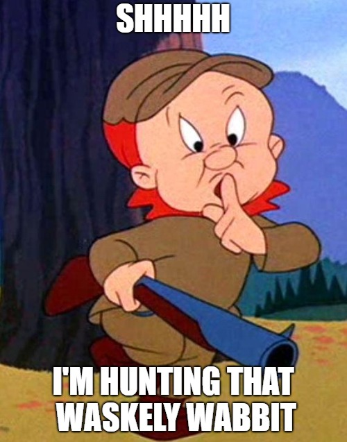 Elmer Fudd | SHHHHH I'M HUNTING THAT WASKELY WABBIT | image tagged in elmer fudd | made w/ Imgflip meme maker