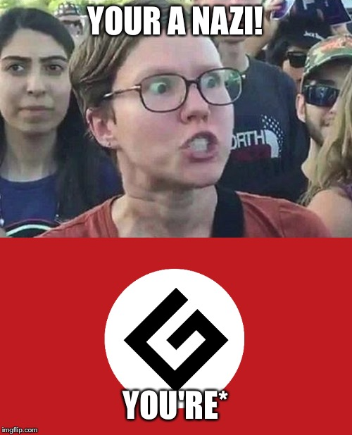 Based on real events! | YOUR A NAZI! YOU'RE* | image tagged in triggered liberal,grammar nazi | made w/ Imgflip meme maker