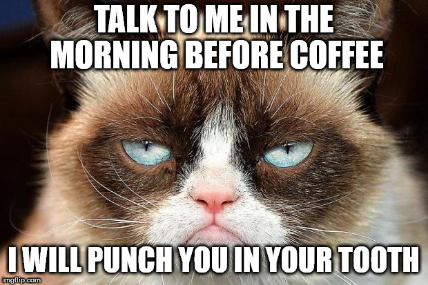 Grumpy Cat Not Amused Meme | TALK TO ME IN THE MORNING BEFORE COFFEE I WILL PUNCH YOU IN YOUR TOOTH | image tagged in memes,grumpy cat not amused,grumpy cat | made w/ Imgflip meme maker