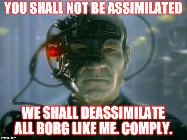 Locutus of Borg | YOU SHALL NOT BE ASSIMILATED WE SHALL DEASSIMILATE ALL BORG LIKE ME. COMPLY. | image tagged in locutus of borg | made w/ Imgflip meme maker