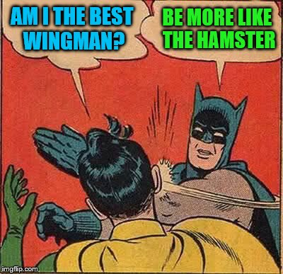 Batman Slapping Robin Meme | AM I THE BEST WINGMAN? BE MORE LIKE THE HAMSTER | image tagged in memes,batman slapping robin | made w/ Imgflip meme maker