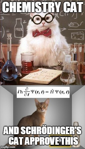 CHEMISTRY CAT AND SCHRÖDINGER'S CAT APPROVE THIS | made w/ Imgflip meme maker