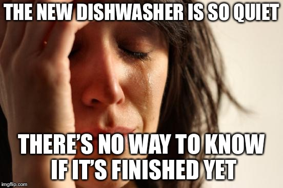 First World Problems Meme | THE NEW DISHWASHER IS SO QUIET THERE'S NO WAY TO KNOW IF IT'S FINISHED YET | image tagged in memes,first world problems | made w/ Imgflip meme maker