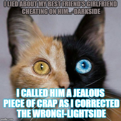 I LIED ABOUT MY BEST FRIEND'S GIRLFRIEND CHEATING ON HIM...-DARKSIDE I CALLED HIM A JEALOUS PIECE OF CRAP AS I CORRECTED THE WRONG!-LIGHTSID | image tagged in double cat | made w/ Imgflip meme maker
