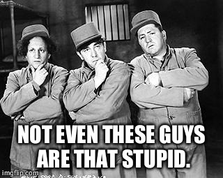 Three Stooges Thinking | NOT EVEN THESE GUYS ARE THAT STUPID. | image tagged in three stooges thinking | made w/ Imgflip meme maker