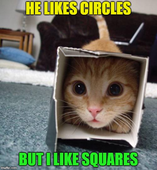 HE LIKES CIRCLES BUT I LIKE SQUARES | made w/ Imgflip meme maker
