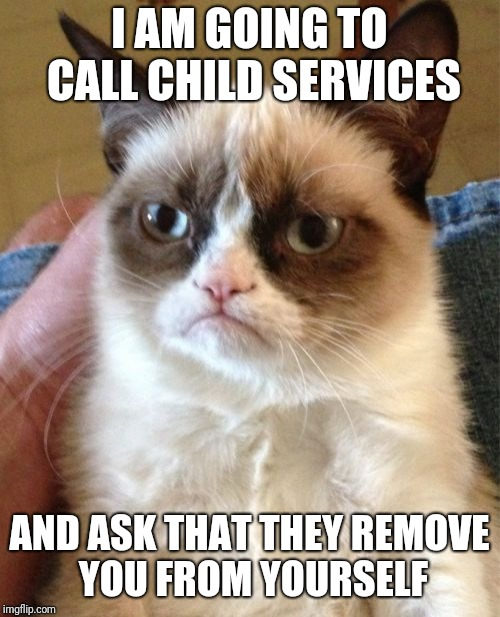 Grumpy Cat Meme | I AM GOING TO CALL CHILD SERVICES AND ASK THAT THEY REMOVE YOU FROM YOURSELF | image tagged in memes,grumpy cat | made w/ Imgflip meme maker