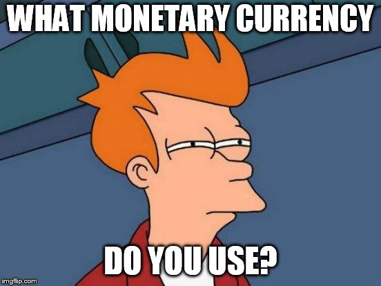 Futurama Fry Meme | WHAT MONETARY CURRENCY DO YOU USE? | image tagged in memes,futurama fry | made w/ Imgflip meme maker