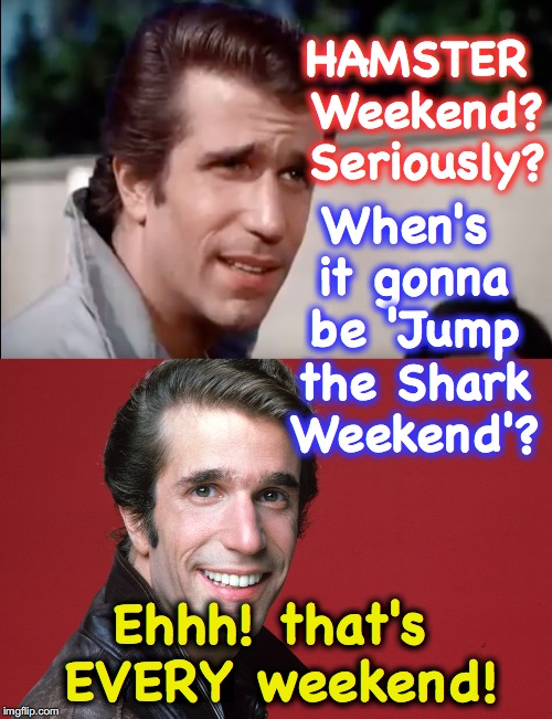 HAMSTER Weekend? Seriously? When's it gonna be 'Jump the Shark Weekend'? Ehhh! that's EVERY weekend! | image tagged in fonzie,the fonz,hamster weekend | made w/ Imgflip meme maker