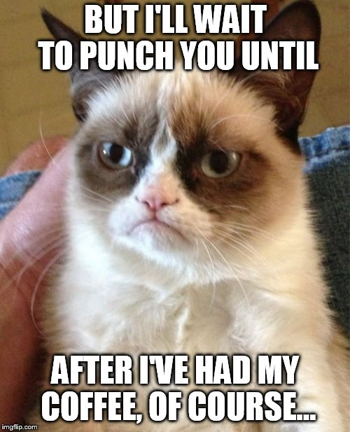 Grumpy Cat Meme | BUT I'LL WAIT TO PUNCH YOU UNTIL AFTER I'VE HAD MY COFFEE, OF COURSE... | image tagged in memes,grumpy cat | made w/ Imgflip meme maker