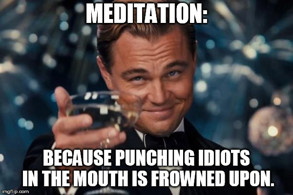 Leonardo Dicaprio Cheers Meme | MEDITATION: BECAUSE PUNCHING IDIOTS IN THE MOUTH IS FROWNED UPON. | image tagged in memes,leonardo dicaprio cheers | made w/ Imgflip meme maker