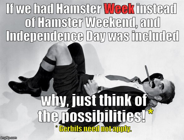 Hamster Weekend July 6-8 a bachmemeguy, 1forpeace, and Shen_Hiroku_Nagato event missed by that much! | If we had Hamster Week instead of Hamster Weekend, and Independence Day was included why, just think of the possibilities! * * Gerbils need  | image tagged in recumbent groucho,hamster weekend,could have been hamster week,think about it,no gerbils,douglie | made w/ Imgflip meme maker