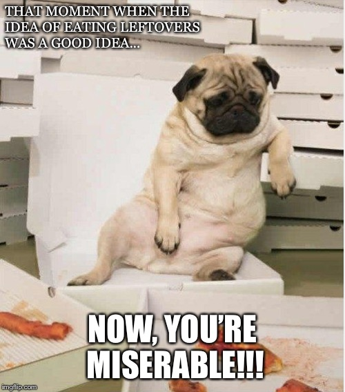 THAT MOMENT WHEN THE IDEA OF EATING LEFTOVERS WAS A GOOD IDEA... NOW, YOU'RE MISERABLE!!! | image tagged in too much food | made w/ Imgflip meme maker