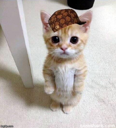 "This was the first thing that popped up and I said ""It needs a scumbag hat"". 