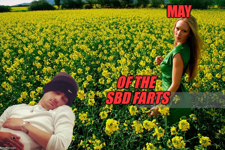 MAY OF THE SBD FARTS | made w/ Imgflip meme maker