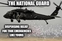 National guard | THE NATIONAL GUARD DISPENSING RELIEF FOR TRUE EMERGENCIES LIKE YOURS | image tagged in national guard | made w/ Imgflip meme maker