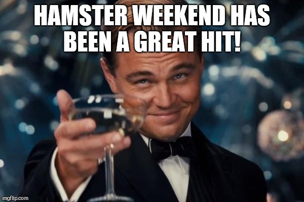 Leonardo Dicaprio Cheers Meme | HAMSTER WEEKEND HAS BEEN A GREAT HIT! | image tagged in memes,leonardo dicaprio cheers | made w/ Imgflip meme maker