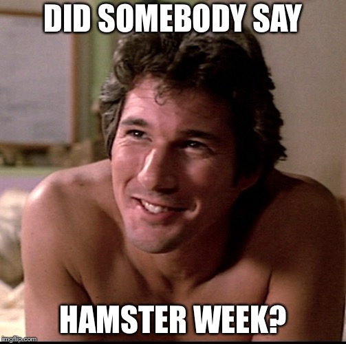Richard Gere  | DID SOMEBODY SAY HAMSTER WEEK? | image tagged in hamster,richard gere | made w/ Imgflip meme maker