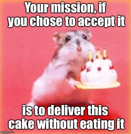 birthday hamster | Your mission, if you chose to accept it is to deliver this cake without eating it | image tagged in birthday hamster | made w/ Imgflip meme maker