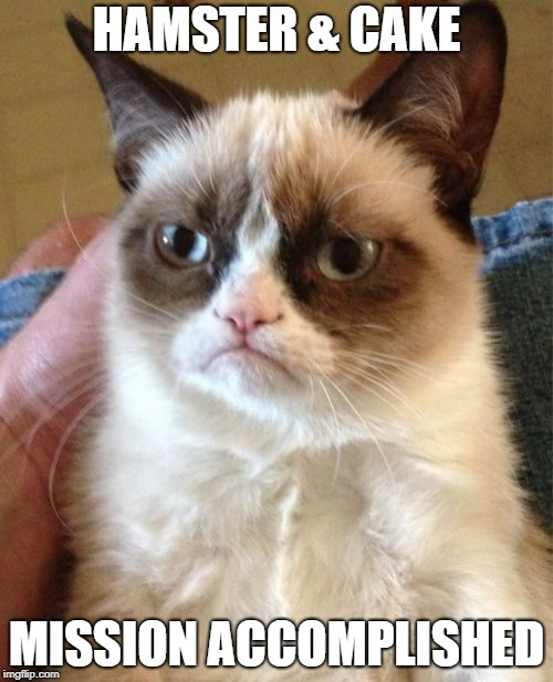 Grumpy Cat Meme | HAMSTER & CAKE MISSION ACCOMPLISHED | image tagged in memes,grumpy cat | made w/ Imgflip meme maker