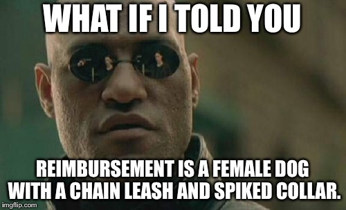 Can you guess what this means? | WHAT IF I TOLD YOU REIMBURSEMENT IS A FEMALE DOG WITH A CHAIN LEASH AND SPIKED COLLAR. | image tagged in memes,matrix morpheus,pay,dog,words,chain | made w/ Imgflip meme maker