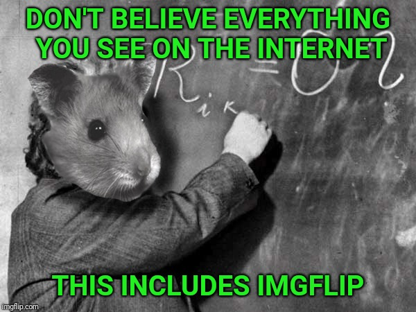 Hamster weekend is closing soon! | DON'T BELIEVE EVERYTHING YOU SEE ON THE INTERNET THIS INCLUDES IMGFLIP | image tagged in hamster weekend,hamster,einstein,internet,photoshop,imgflip | made w/ Imgflip meme maker