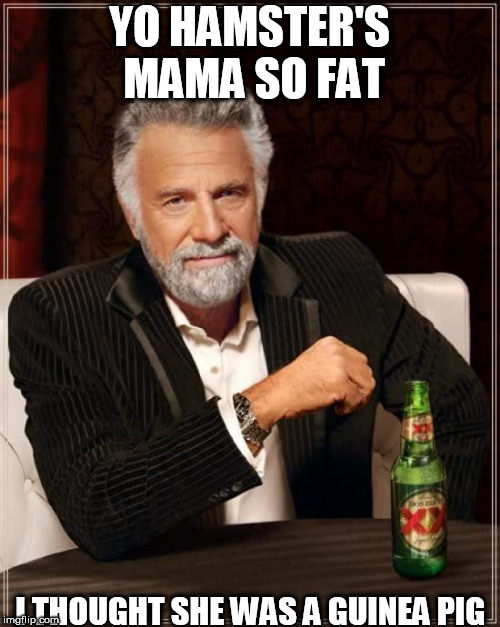 The Most Interesting Man In The World Meme | YO HAMSTER'S MAMA SO FAT I THOUGHT SHE WAS A GUINEA PIG | image tagged in memes,the most interesting man in the world | made w/ Imgflip meme maker