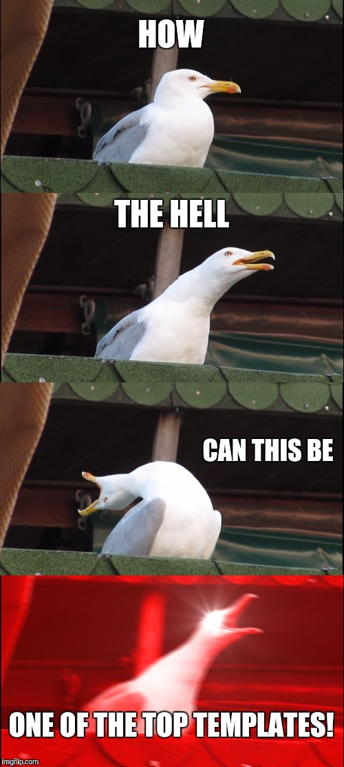 Inhaling Seagull Meme | HOW THE HELL CAN THIS BE ONE OF THE TOP TEMPLATES! | image tagged in memes,inhaling seagull | made w/ Imgflip meme maker