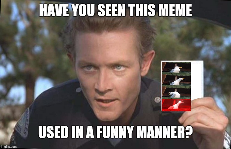 Have You Seen | HAVE YOU SEEN THIS MEME USED IN A FUNNY MANNER? | image tagged in have you seen | made w/ Imgflip meme maker