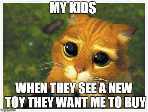 Shrek Cat Meme | MY KIDS WHEN THEY SEE A NEW TOY THEY WANT ME TO BUY | image tagged in memes,shrek cat | made w/ Imgflip meme maker
