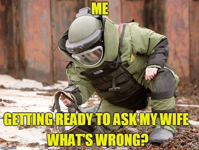 Bomb's Away |  ME; GETTING READY TO ASK MY WIFE; WHAT'S WRONG? | image tagged in wife,ballistic,funny meme | made w/ Imgflip meme maker