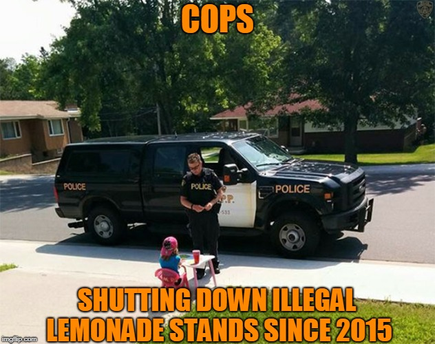 Don't You Have Anything Better To Do? | COPS SHUTTING DOWN ILLEGAL LEMONADE STANDS SINCE 2015 | image tagged in cops,kids,lemonade,funny | made w/ Imgflip meme maker