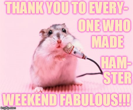 It's So Great!!! | THANK YOU TO EVERY- WEEKEND FABULOUS!!! ONE WHO MADE HAM- STER | image tagged in memes,hamster weekend,thank you everyone,great,fabulous,weekend | made w/ Imgflip meme maker