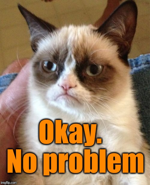 Grumpy Cat Meme | Okay.  No problem | image tagged in memes,grumpy cat | made w/ Imgflip meme maker