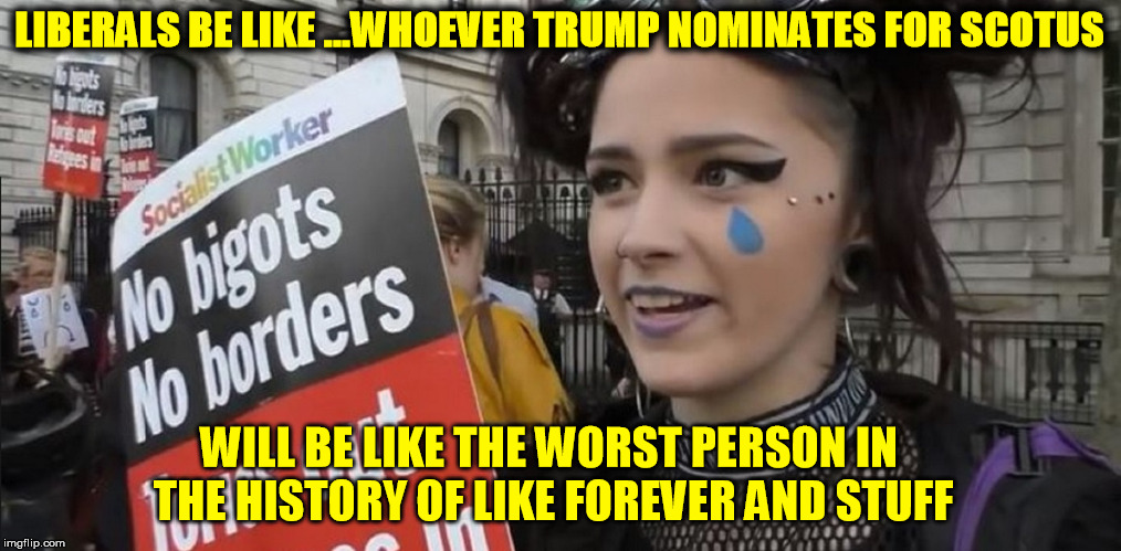 LIBERALS BE LIKE ...WHOEVER TRUMP NOMINATES FOR SCOTUS WILL BE LIKE THE WORST PERSON IN THE HISTORY OF LIKE FOREVER AND STUFF | image tagged in anti trump,democrats,college liberal,stupid liberals,impeach trump,libtards | made w/ Imgflip meme maker