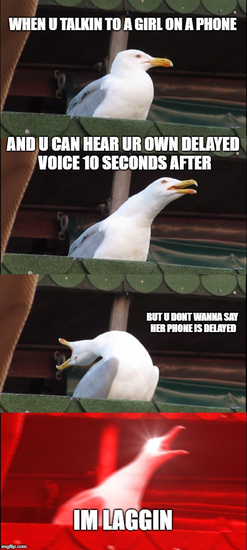 Inhaling Seagull Meme | WHEN U TALKIN TO A GIRL ON A PHONE AND U CAN HEAR UR OWN DELAYED VOICE 10 SECONDS AFTER BUT U DONT WANNA SAY HER PHONE IS DELAYED IM LAGGIN | image tagged in memes,inhaling seagull | made w/ Imgflip meme maker