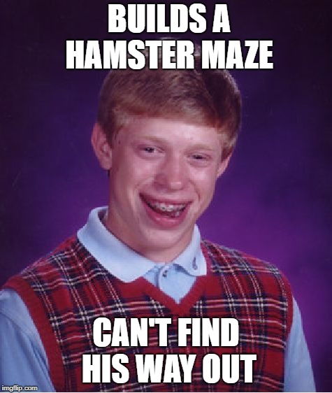 Bad Luck Brian Meme | BUILDS A HAMSTER MAZE CAN'T FIND HIS WAY OUT | image tagged in memes,bad luck brian | made w/ Imgflip meme maker