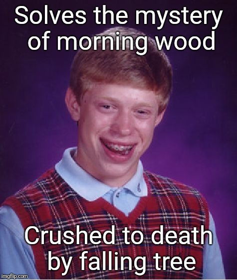 Hard wood | Solves the mystery of morning wood Crushed to death by falling tree | image tagged in memes,bad luck brian | made w/ Imgflip meme maker