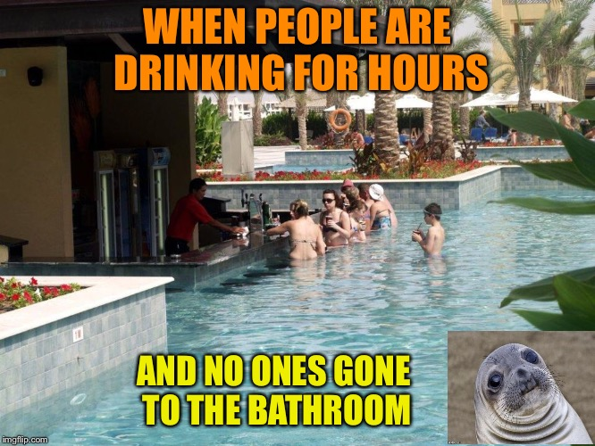Make that a double. | WHEN PEOPLE ARE DRINKING FOR HOURS AND NO ONES GONE TO THE BATHROOM | image tagged in awkward moment sealion,pool,pee,memes,funny | made w/ Imgflip meme maker
